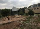 """Eindrücke vom Fachkräfteaustausch """"Living Diversity"""" in Israel_9"""